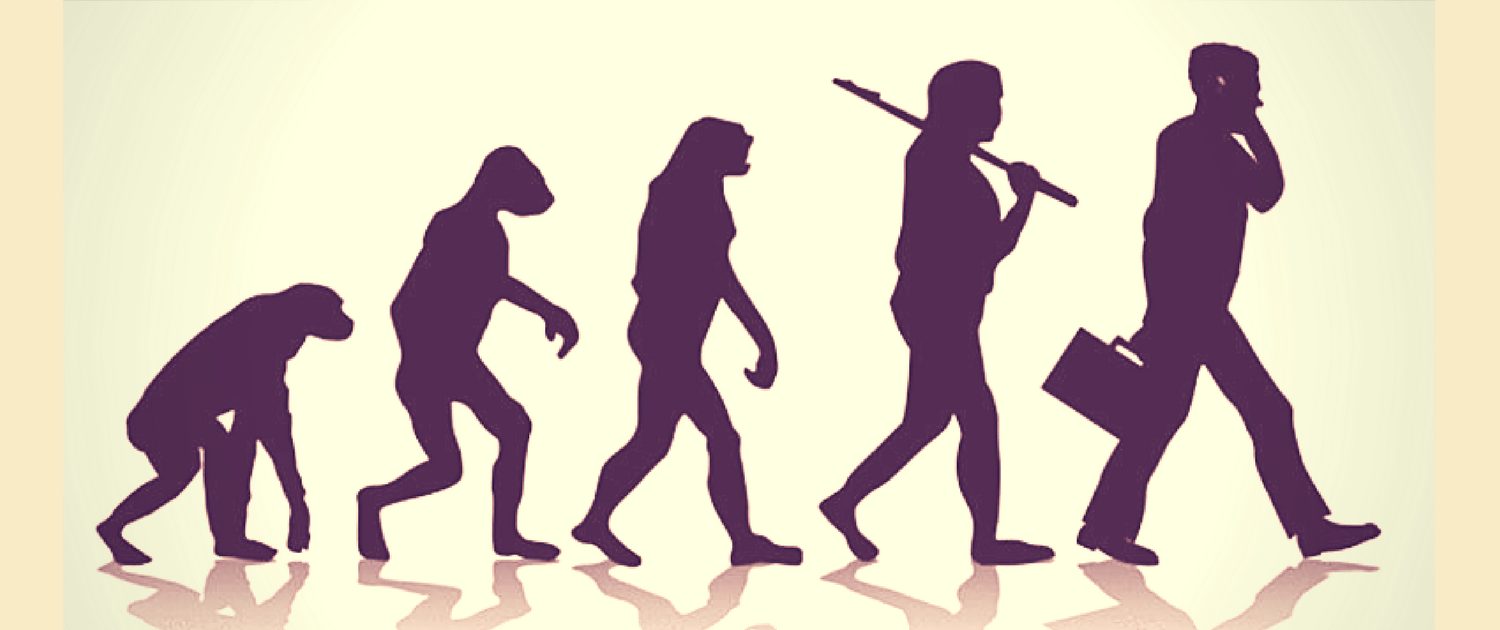 evolution outlined from human anthropology